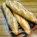 Baguette col poolish